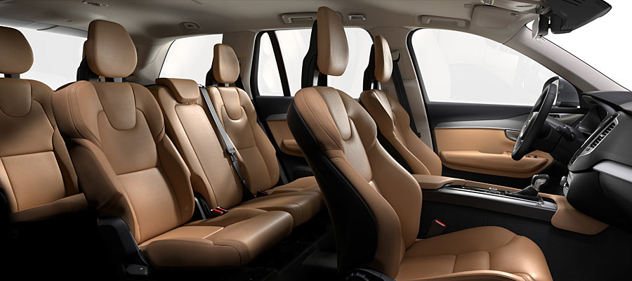 Nappa Leather Amber in Charcoal interior (RB20)